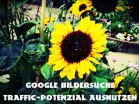 Google Bilder: Wie du das volle Traffic-Potenzial erfolgreich nutzt