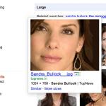 +1-Button für Bilder, Social Image Search