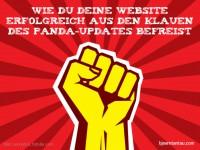 Wie du deine Website erfolgreich aus den Klauen des Panda-Updates befreist